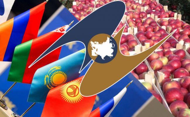ДНР начинает работу потаможенным правилам ЕАЭС наввозимую продукцию