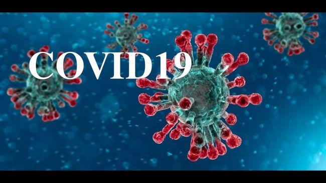 В Москве ритуальное агентство патентует товарный знак coronavirus ...