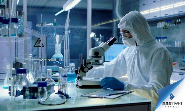 Ученые: Кошачье лекарство может подавлять коронавирус у человека —  Общество. Новости, Другие — EADaily